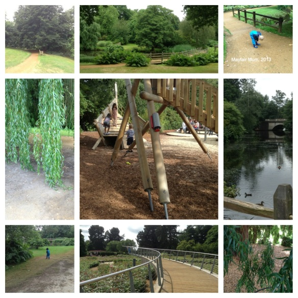 Excitement and adventure at Savill Garden